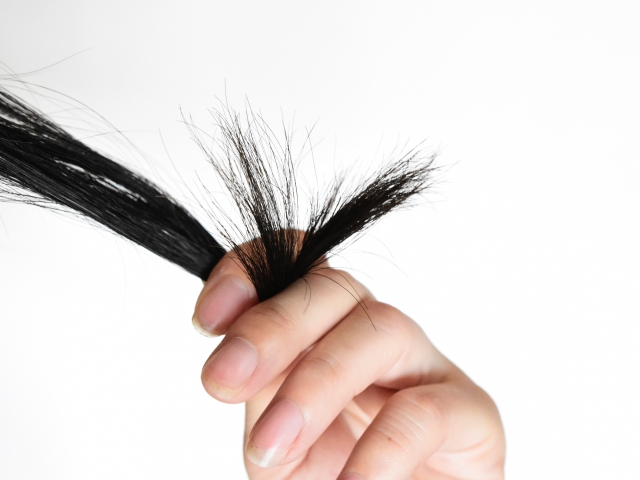 枝毛の原因